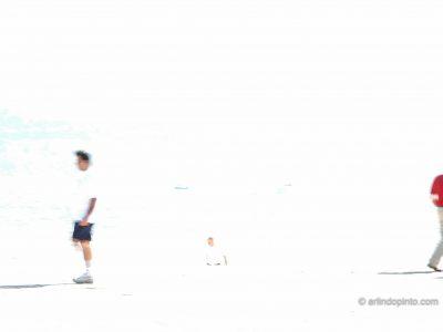 arlindo-pinto-fios-de-vida-10