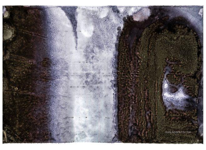 arlindo-pinto-project-i-photography-22