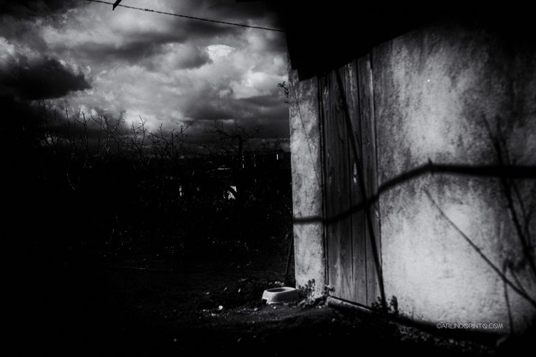 arlindo-pinto-fotografia-identidade-08