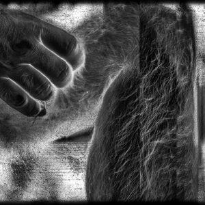 Perna e mão da série