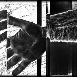 Corpo humano digitalizado Uma Mão
