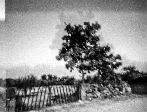 arlindo-pinto-toscazine-fotografia